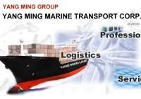 Logo hãng tàu Yangming