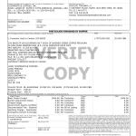 Mẫu chi tiết vận đơn Bill of lading