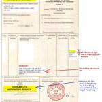 Chứng từ nhập khẩu Trung Quốc C/O form E