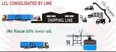Vận chuyển hàng lẻ và hàng full container