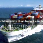 Bảo hiểm hàng hải và những rủi ro cơ bản cần lưu ý