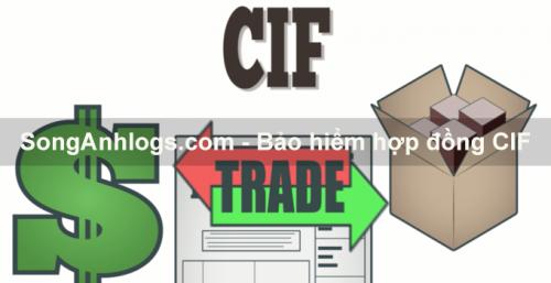 Bảo hiểm trong hợp đồng CIF