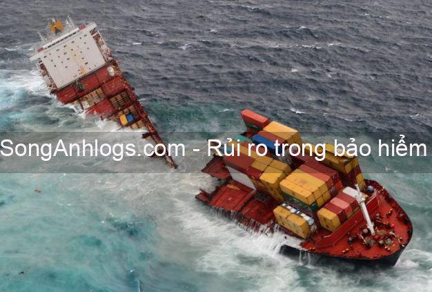 Rủi ro chìm tàu container